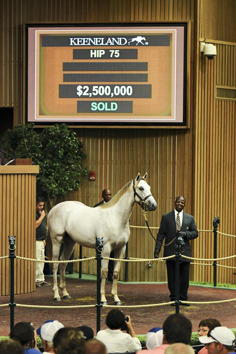 Godolphin's new grey cost $2.5 million