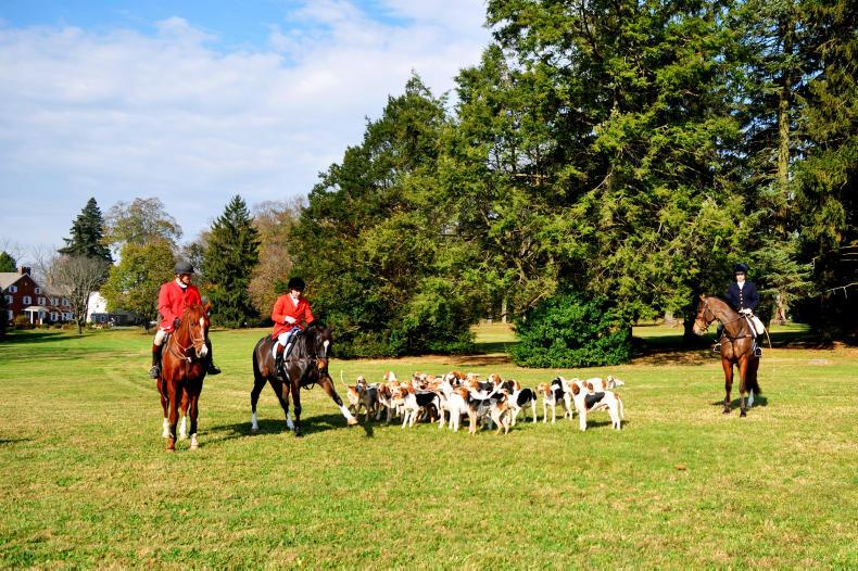 APPRECIATION:  Farewell to dedicated horseman and friend to Irish hunting