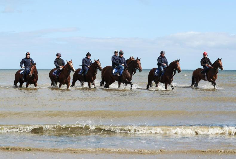 PHOTOS OF THE WEEK: From Cork and Listowel to Laytown