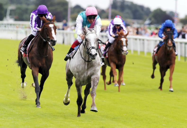 Logician to face seven St Leger rivals