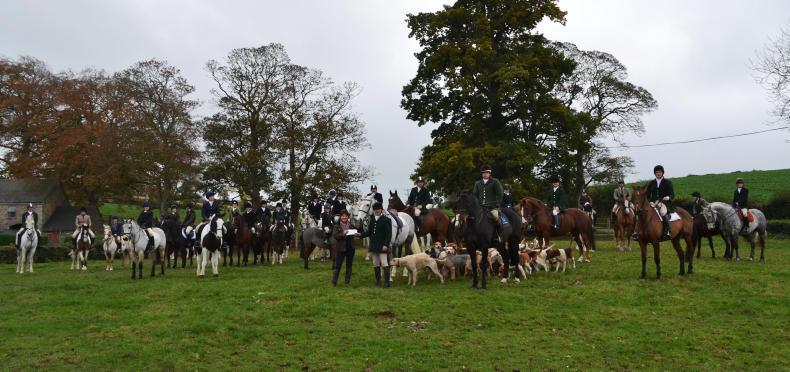 HUNTING FEATURE 2019:  Pre-season hacks with Newry Hunt