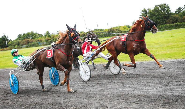 HARNESS RACING: Headline performance by Silvano Bello