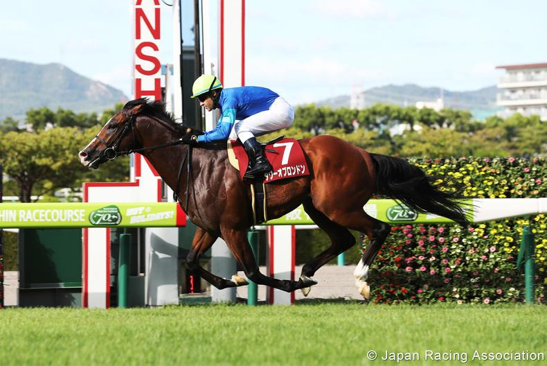 JAPAN: Tower Of London a new Godolphin sprinting star