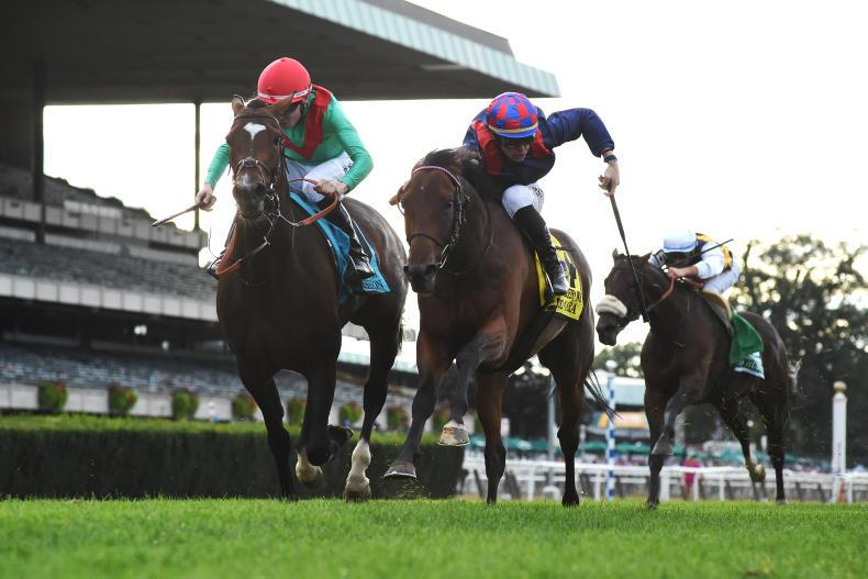Spanish Mission likely to resume European campaign following Belmont heroics