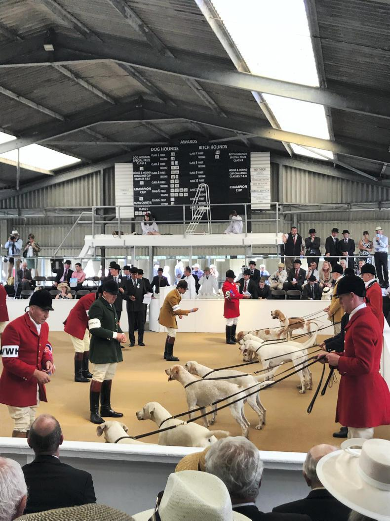 HUNTING FEATURE 2019: Peterborough Hound Show – an ideal day-trip