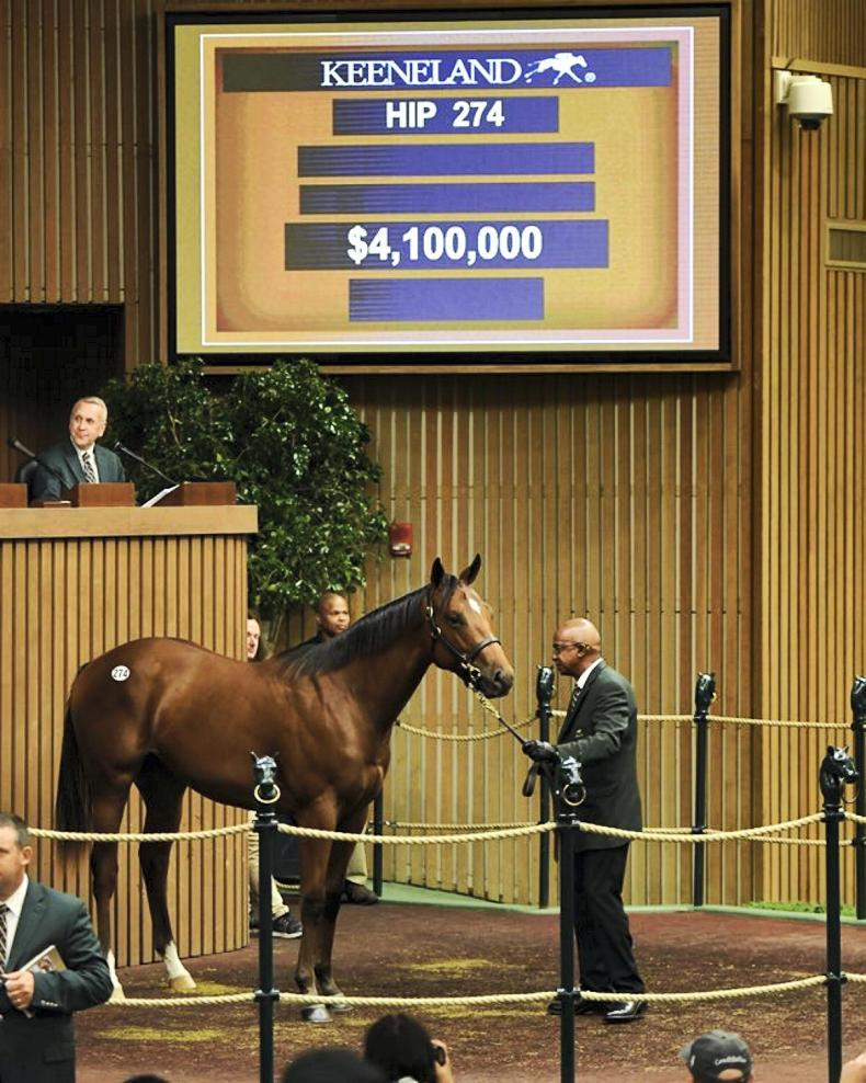 KEENELAND SEPTEMBER YEARLING SALE: Beholder's sibling smashes sale record