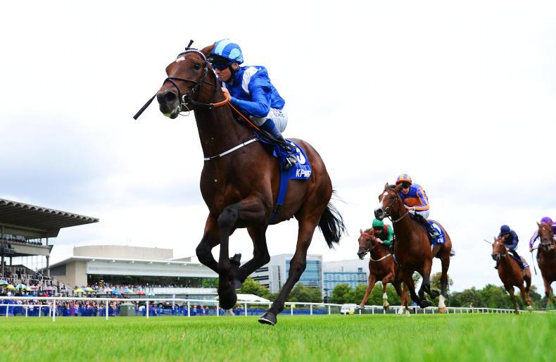 IRISH CHAMPION STAKES: Preview of Saturday's big race