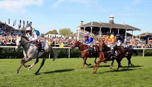 Logician storms to St Leger glory