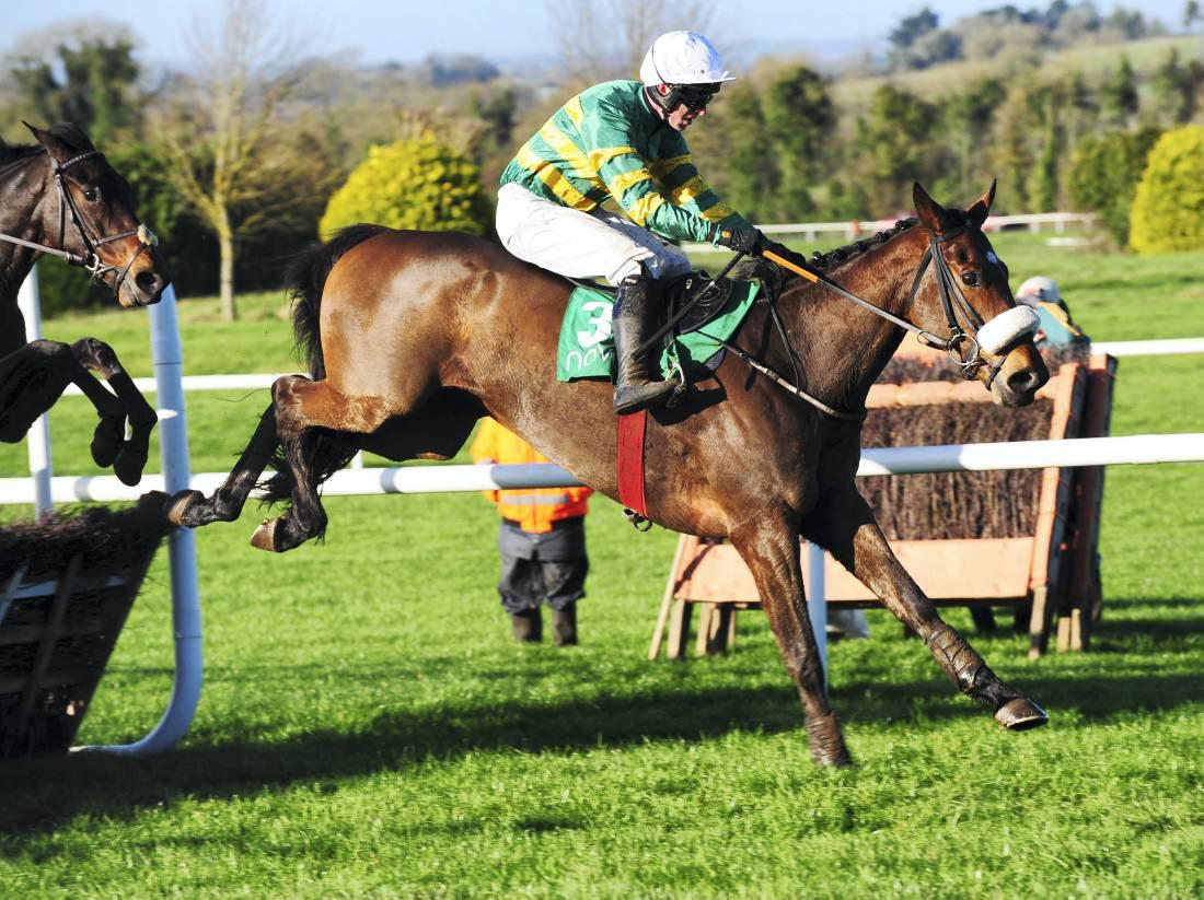 'Talking horses' head Naas Grade 1 field