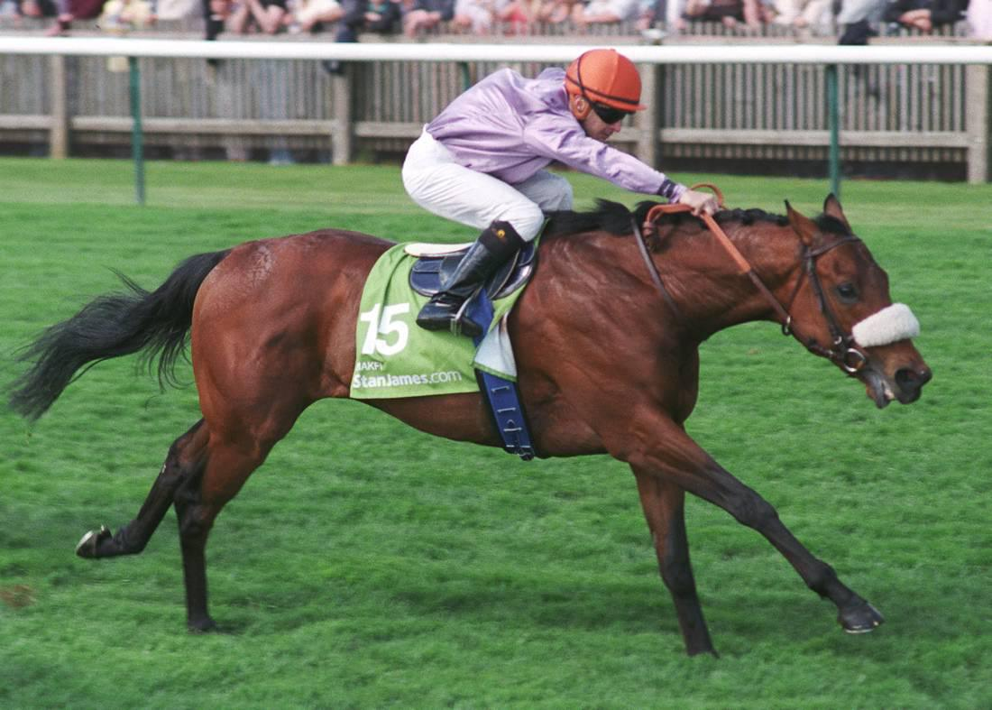 Pedigree notes from the recent blacktype action