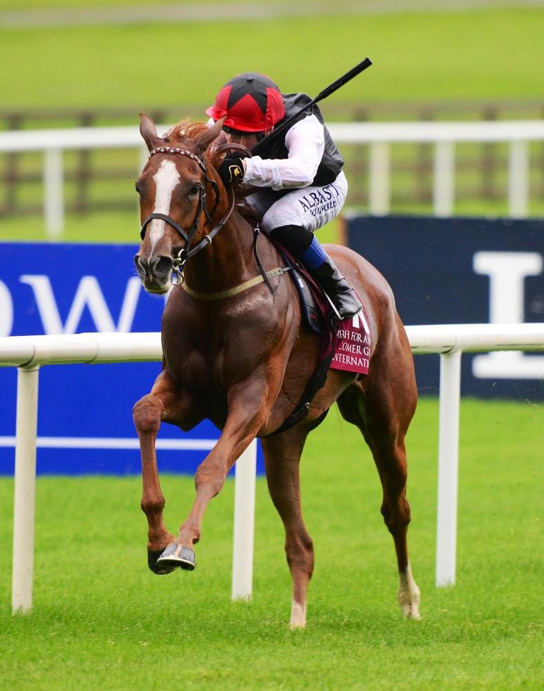 PEDIGREE ANALYSIS: Moyglare homebred a Polished Gem