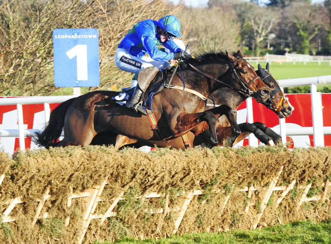 Hurricane Fly heads for fifth Irish Champion Hurdle win