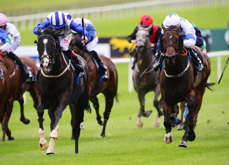 Favourite Buffer Zone handed high draw in Ayr Gold Cup