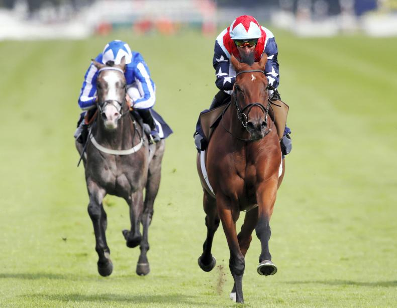 SALES: Many more sporting winners to be found