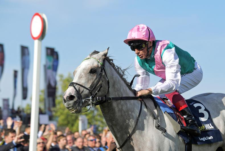 BREEDING INSIGHTS: Dettori is hot on Logician