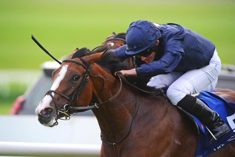 GOWRAN PARK SATURDAY: Credenza can gain deserved Group success