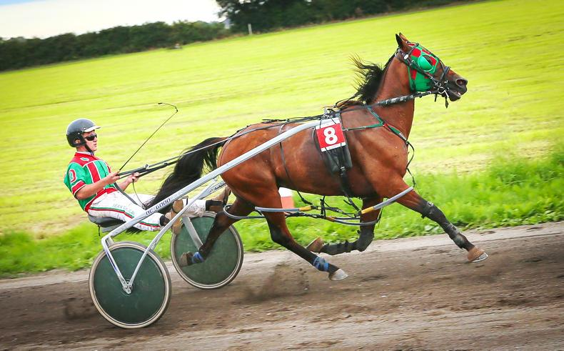 HARNESS RACING:  Magician took the top prize up north