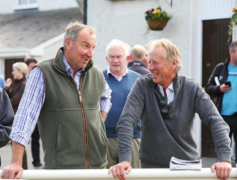 NEWS: Foreign buyers expected to boost Fairyhouse trade