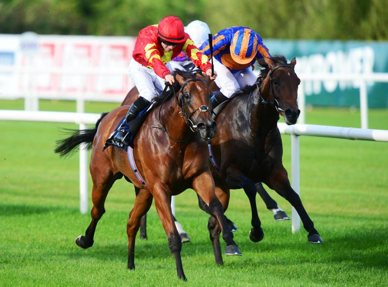 LEOPARDSTOWN SATURDAY: Group 1 success for Iridessa