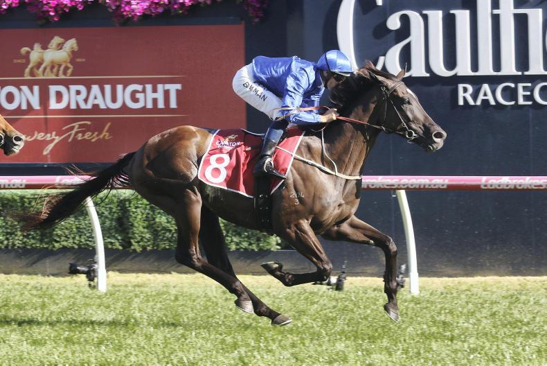 AUSTRALIA: Avilius showcases Plate prospects with George Main win