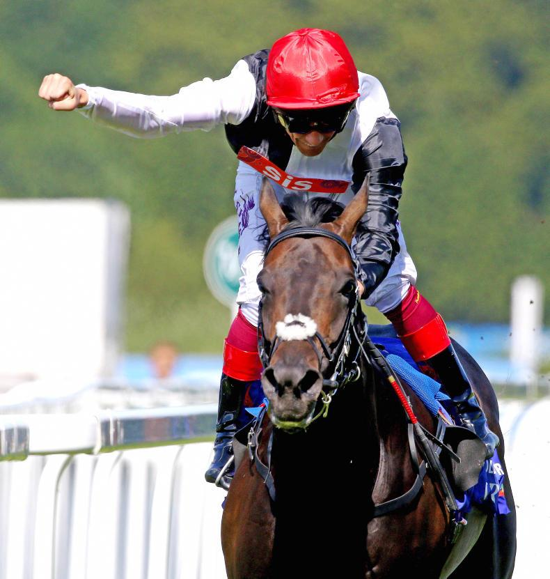 TATTERSALLS OCTOBER YEARLINGS: Find your future champion