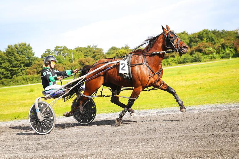 HARNESS RACING: Nicholsons double up on Ladies day
