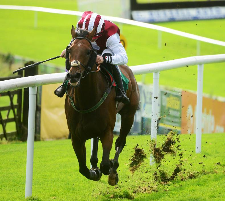DOWNPATRICK FRIDAY: Charm finds his stride