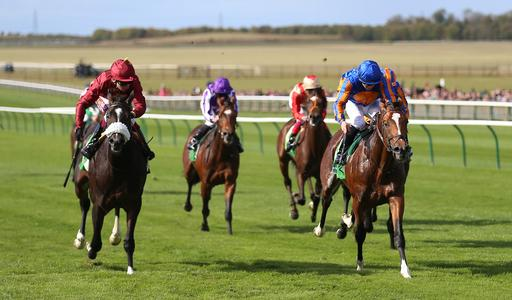 Dornoch springs Royal Lodge surprise at Newmarket