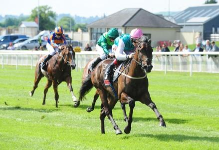 Siskin 'stiff and sore' following his Newmarket mishap
