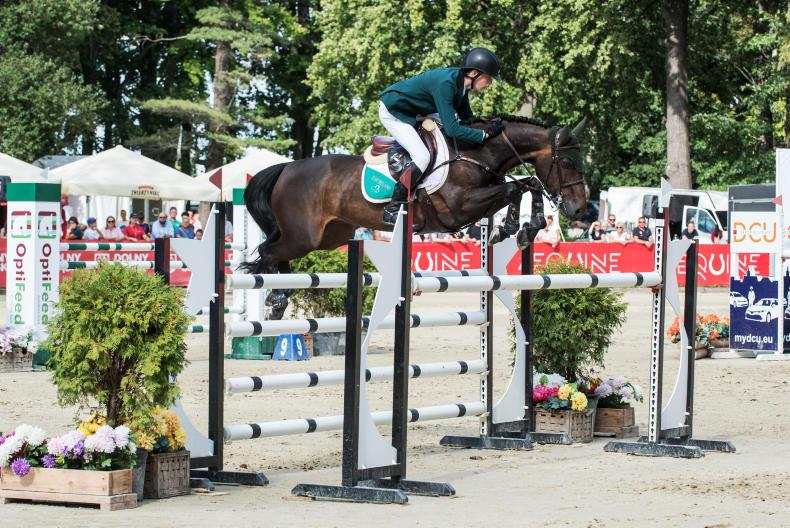 SHOW JUMPING: Golden reward for Max Wachman