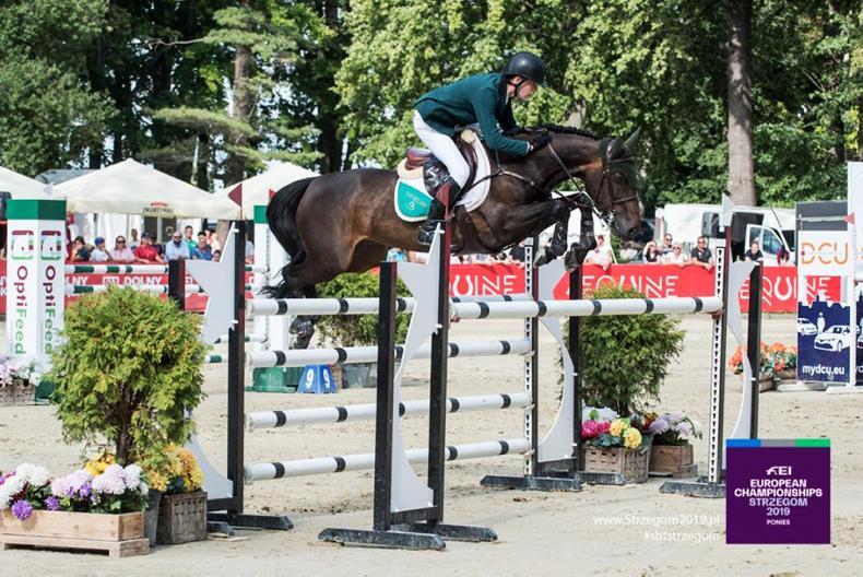 SHOW JUMPING: Max Wachman wins individual gold at European championships