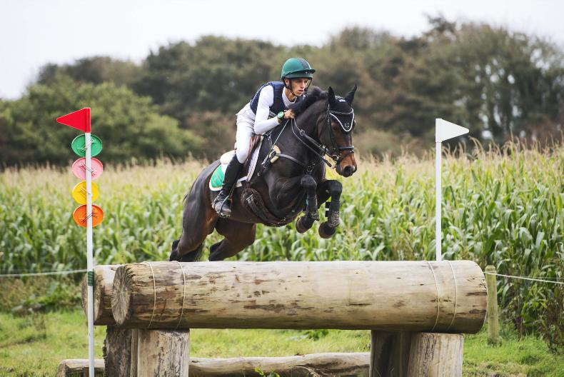 BALLINDENISK INTERNATIONAL: Daniels secures Ireland's only victory