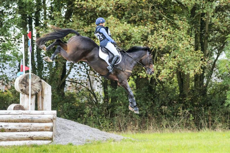 BALLINDENISK INTERNATIONAL:  Allstar B Canters to victory