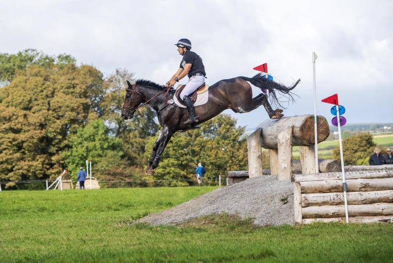 BALLINDENISK INTERNATIONAL:   Avery is One Of A Kind