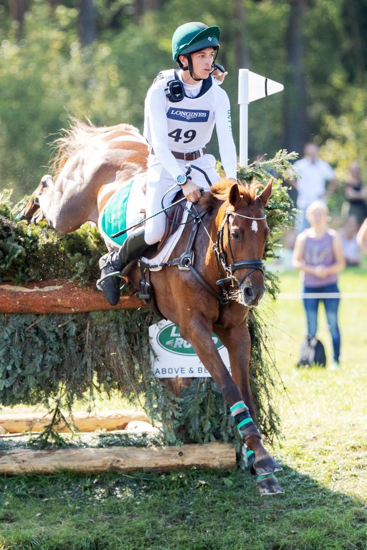 BREEDERS' SALE PREVIEW: Foals in focus