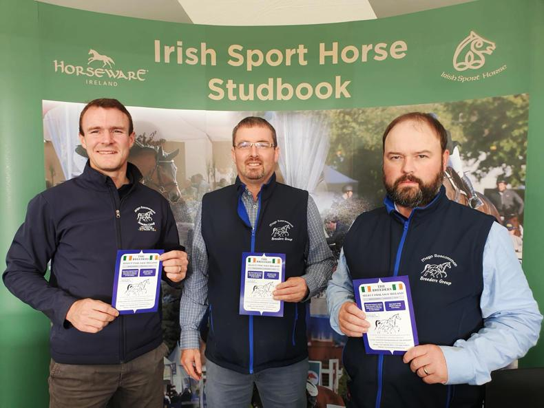 SALE PREVIEW: Quality foals forward for Mayo Roscommon Breeders' sale