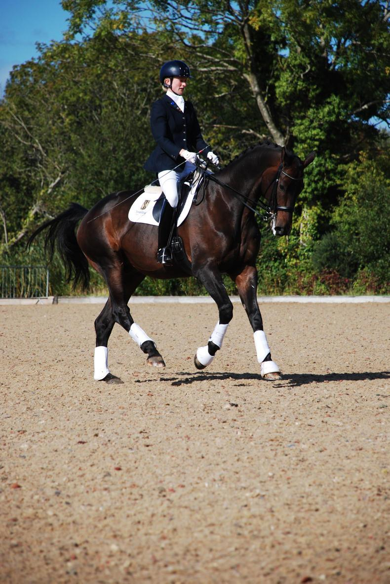 DRESSAGE:  Treble of wins for Dowley