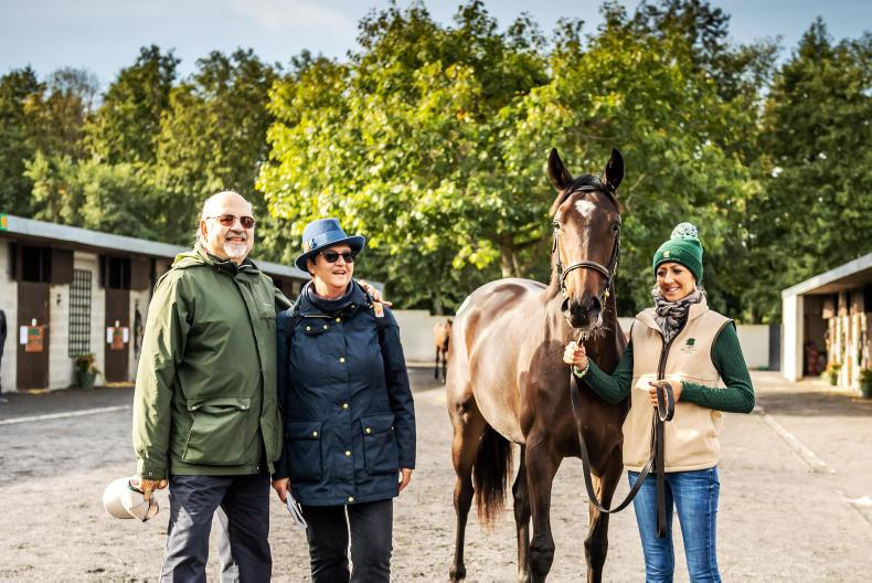GOFFS ORBY SALE: €3 million Galileo filly steals the show