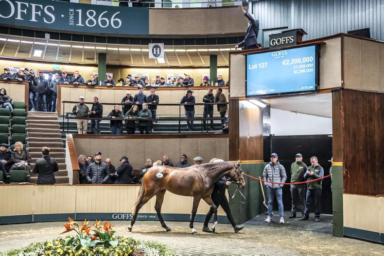 GOFFS ORBY SALE: Sister to Alice Springs leads the way again