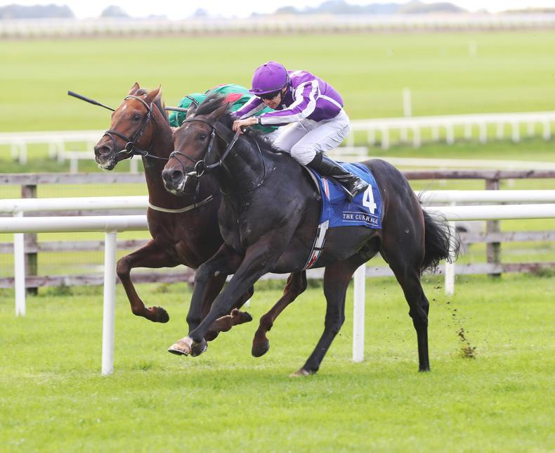 SIMON ROWLANDS: Innisfree underrated after Beresford win