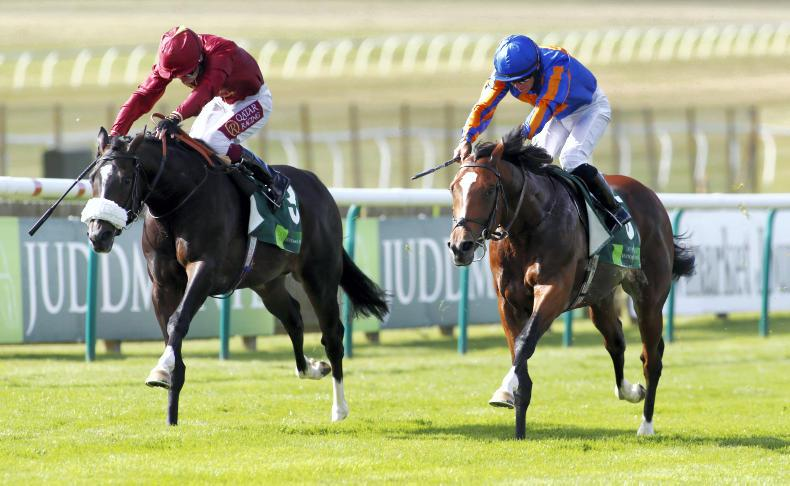 DONN McCLEAN: Another group race for Lordan
