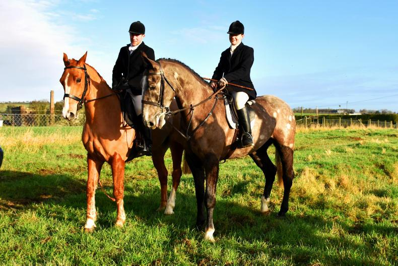 PONY TALES:  Wedding bells for Alan and Edel