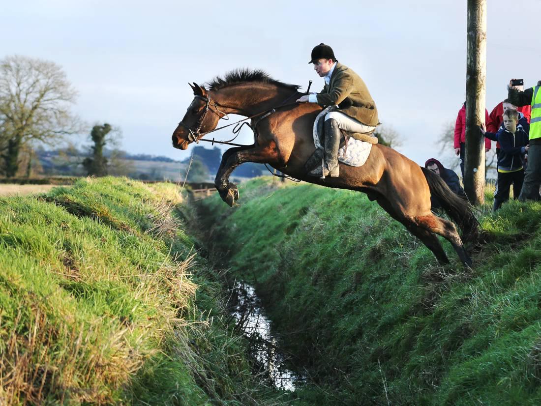 Capture on camera: hunting around Ireland