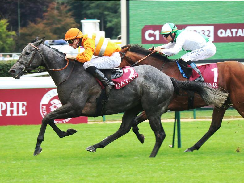 FRANCE: Boudot on fire as Skaletti ridden to the millimetre