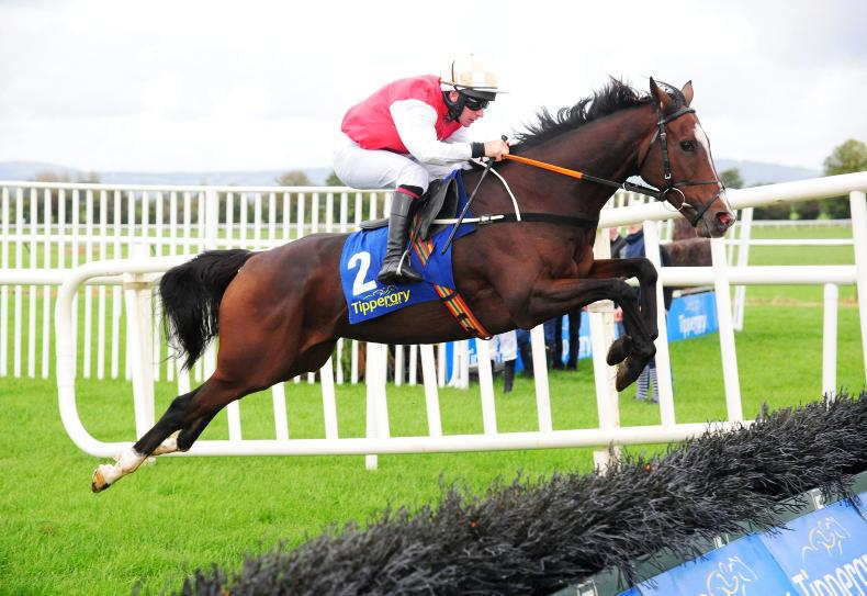 TIPPERARY SUNDAY: Davids stars in Enright double