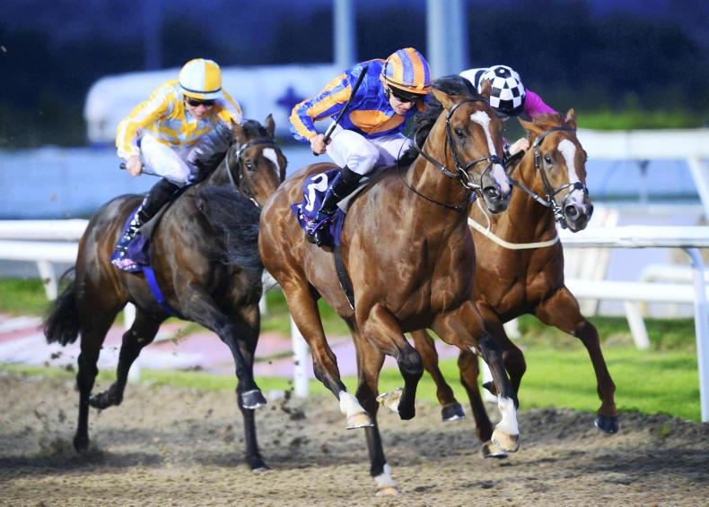 DUNDALK FRIDAY: Deserved stakes success for Fort