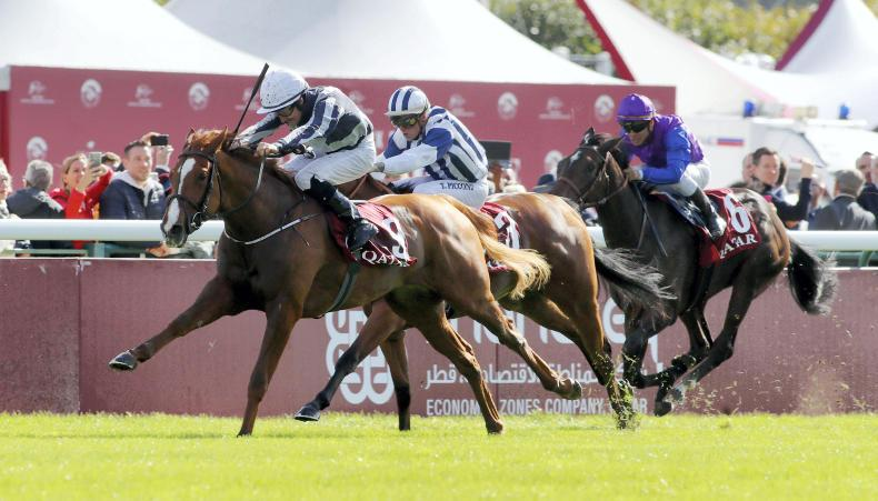 FRANCE: Impressive Albigna another for Harrington