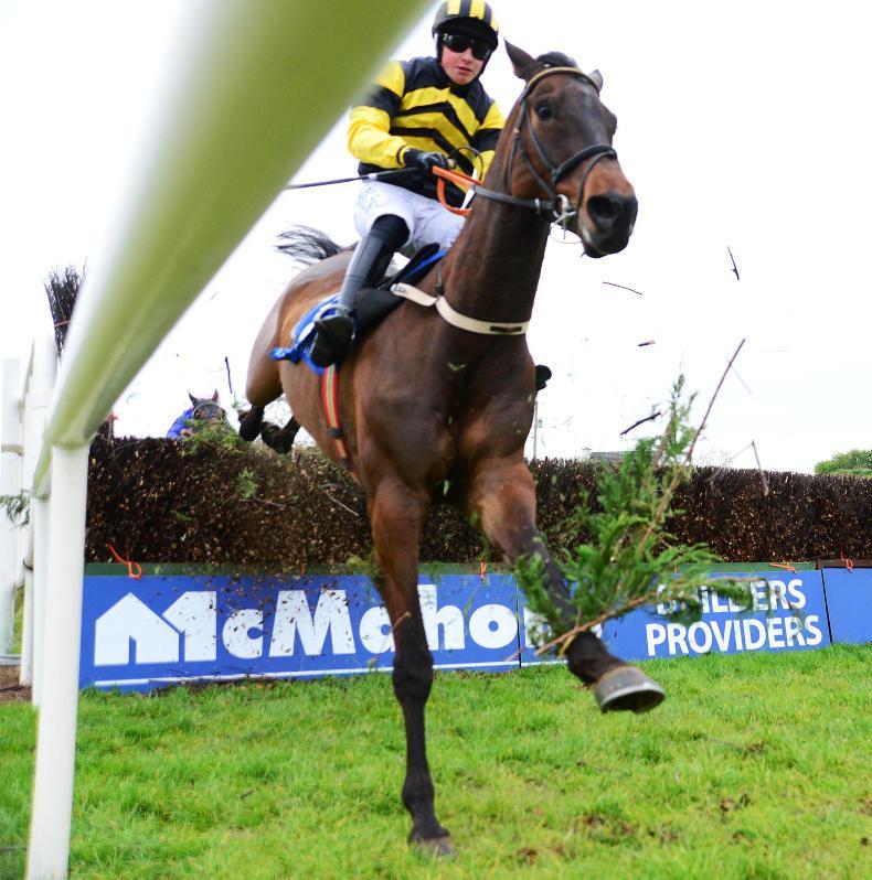 LIMERICK SUNDAY: Go local at Limerick with McNamara's Transfer