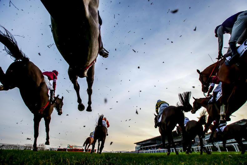 NEWS IN BRIEF: Racing and bloodstock briefs from the October 12th edition