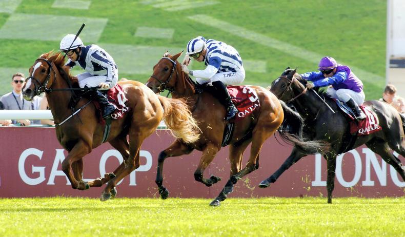 SIMON ROWLANDS: Albigna looks a prime Oaks contender
